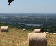 poljoprivredno zemljiste na fruskoj gori